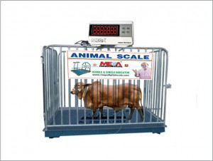 Animal-Scale